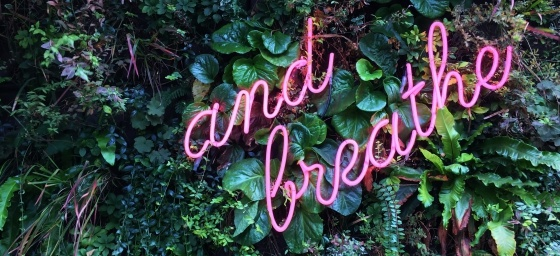Monday Musings 27 July: Remember to Breathe 3