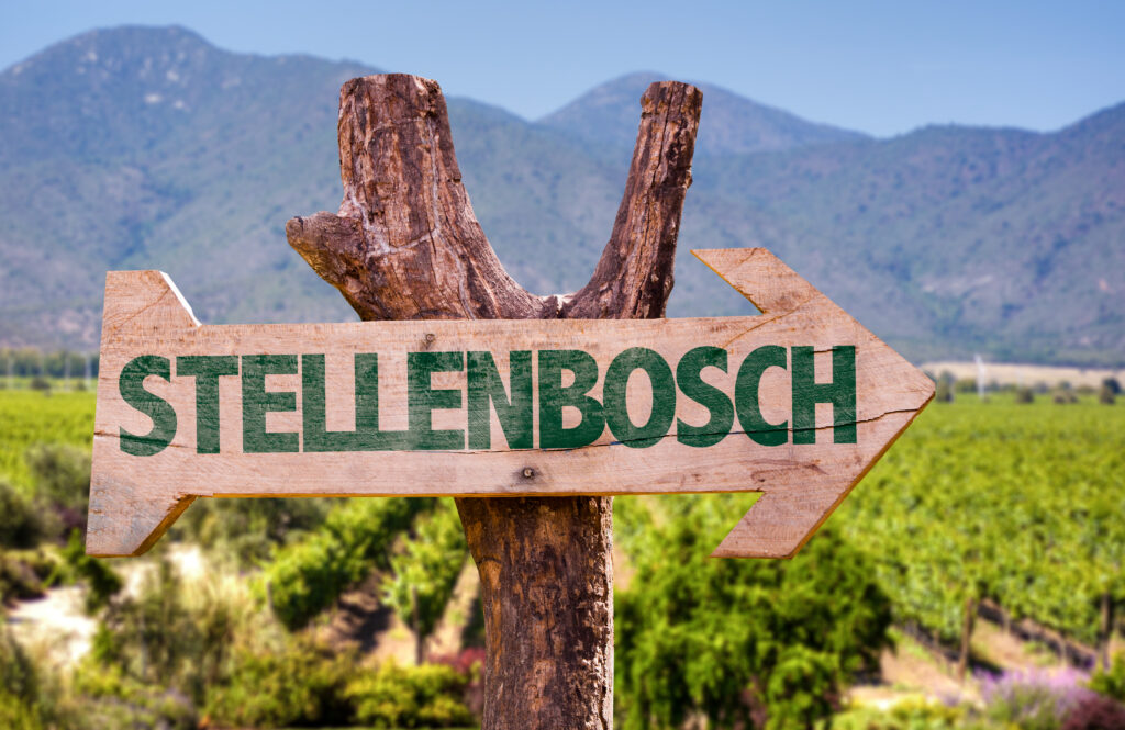 Virtual event to showcase Stellenbosch destination to tourism and travel partners 39